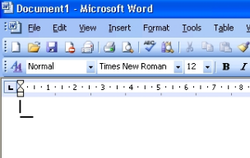 Texten mit Office Word